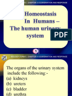 Biology Form 5 - The Human Urinary System