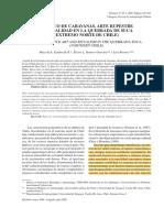 Sepúlveda et al. 2005