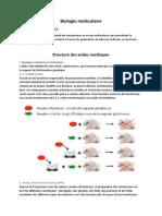 01.02.2016 Structure Des Acides Nucléiques