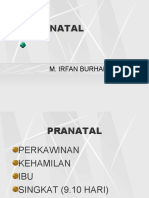 Pranatal