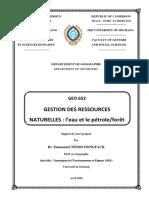 Cours Gestion Des Ressources Naturelles