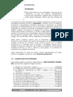 III CAPITULO   O PATRIMONIO 2013_a02b2d75109d5c4681ba9059cd99ef8d