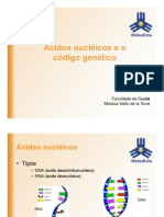 ÁcidosNucléicosPDF