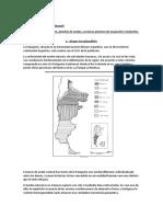 region patagonia