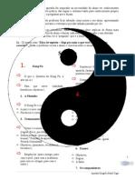 Apostila_kung_fu