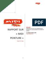 RAPPORT LES PEINTURES DE MIDI