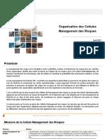 Organisation Cellules Management Des Risques V2