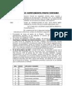 1 INFORME COMISION ALTO INAMBARI.. (1)