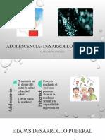 Adolescencia- desarrollo cognitivo