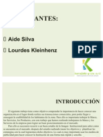 Presentacion Aide,Lourdes. Trabajo de karajallo y cia power Point