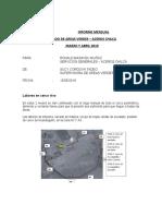 INFORME AREAS VERDES MARZO-ABRIL 2019