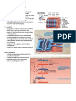 Muscle_Tissue_Handouts_Parts_3-5