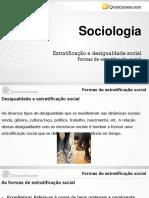1 Ano - Formas de Estratificação Social