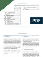 Cap%C3%ADtulo-00-Resumen-Ejecutivo-PIAEERM[1]