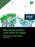 Informe Biocombustibles Rf