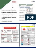 Modelo TARJETA DE EMERGENCIA