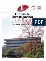 Lineas de Investigacion Faces