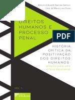 51_direitos-humanos-e-processo-penal-historia-critica-da-positivacao-dos-direitos-humanos-ensaios-para-uma-critica-decolonial-vol-1