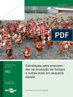 Estratégias para empreender na produção de frangos  e outras aves em pequena  escala