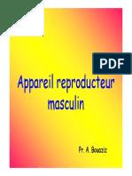 1. Appareil reproducteur masculin (Diaporama) (Pr BOUAZIZ)
