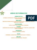 AREAS DE FORMACION