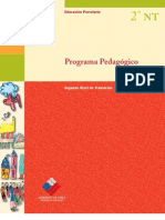 PROGRAMA PEDAGOGICO NT2