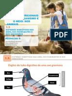 Aecn6 Ppt Digestivo Animais