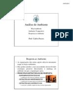 Respostas ao Ambiente.pdf adm estrategica