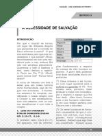PAPO CABEÇA ESTUDO 03