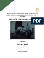 g_Palma_Jipijapa_Candelaria