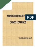 ReproducaoOvinoCaprino 2021 2