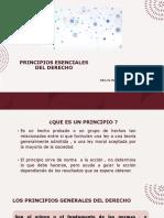 PRINCIPIOS ESENCIALES DEL DERECHO II PAC-2021