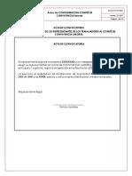 Actas de Conformacion y Funcionamiento Del CCL