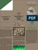 2010 BRS Topázio Folder