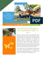 lineamientos_pedagogicos_colegio_en_casa_y_alternancia