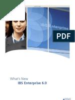 IBS_Enterprise_6.0
