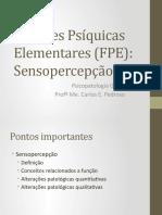 Psicopatologia - Sensopercepção