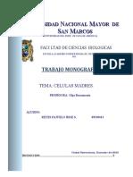 monografia celulas madre