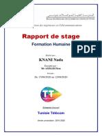 rapport telecom