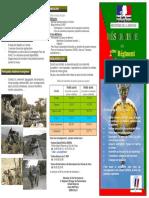 plaquette_reserviste_legion