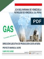 PDVSA DEPCA PMS RIO CARIBE v0 5jul´21 (1)
