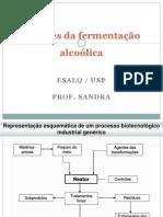 ESALQ_agentes da fermentação alcoolica