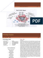 Pure Report Issue 3- March 2011