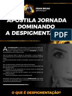 apostila-jornada-dominando-a-despigmentacao (1)