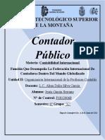 Investigacion Federacion Internacional CONTA