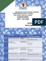 ART 137  PLANTILLA PUESTA Y GRABACION EN ESCENA 2020