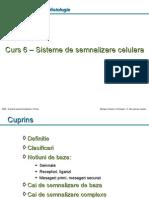 6_Sisteme_de_semnalizare_celulara