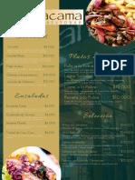 Carta Atacama Pub