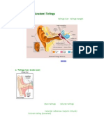 1 Struktur dan Anatomi Telinga