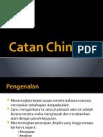 Catan China